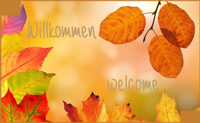 Herbst im Goldene Traube Hotel Ferienwohnung
